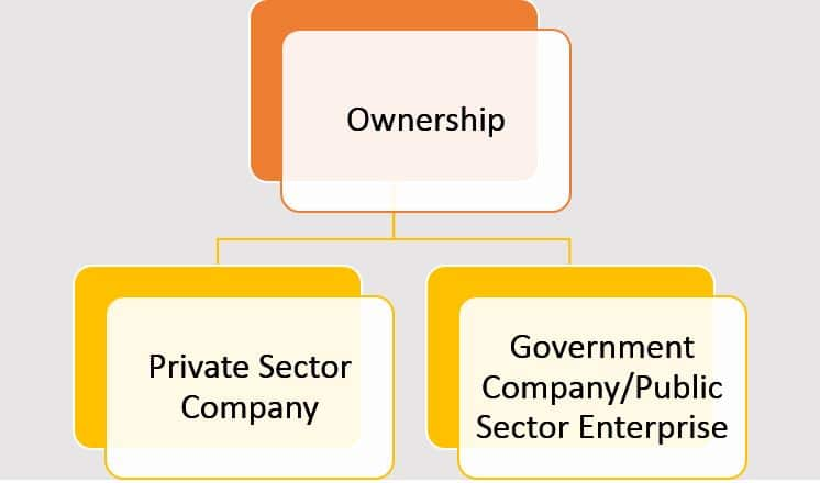 Different Types of Companies in India - On the basis of ownership