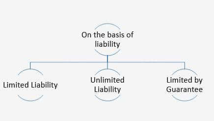 Different types of companies in India - on the basis of liability