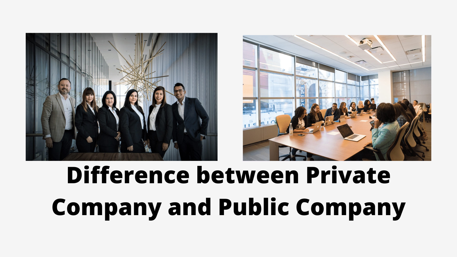 Difference between Private Company and Public Company